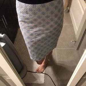 Ann Taylor Searsucker skirt